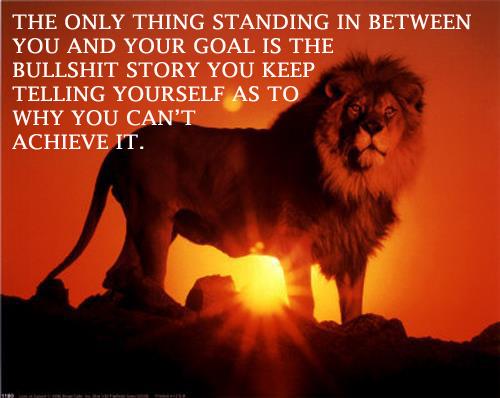 lion goals